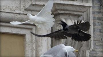 Sulmohen pellumbat e paqes te leshuar nga Vatikani 2