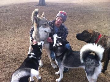 Qeni vs Ujkut
